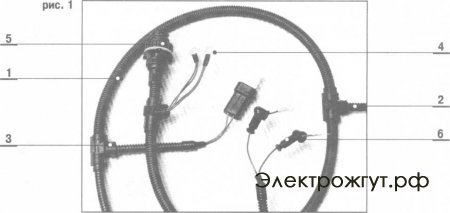 Структура жгута